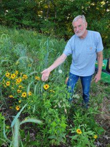Dave van Dyke pointing at his prairie flowers