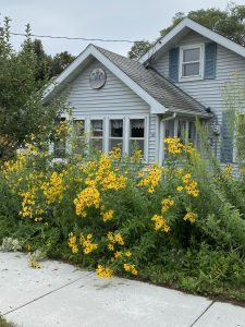 House with native flowers in front of it