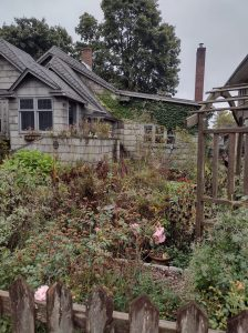 Same garden showing native plantings in fall